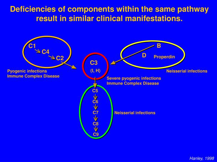 Deficiencies of components within the same pathway result in similar clinical manifestations.