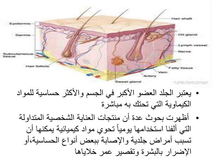 يعتبر الجلد العضو الأكبر في الجسم والأكثر حساسية للمواد الكيماوية التي تحتك