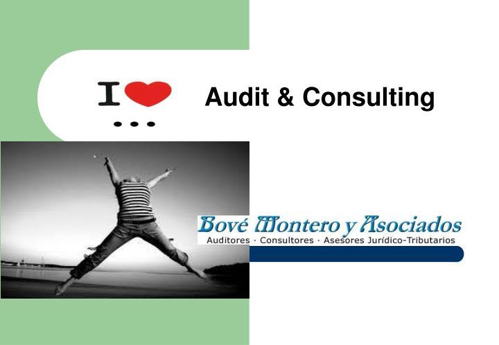 Audit & Consulting