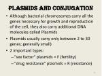 plasmids and conjugation