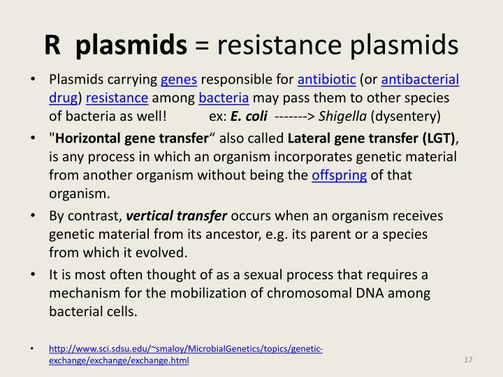 R plasmids