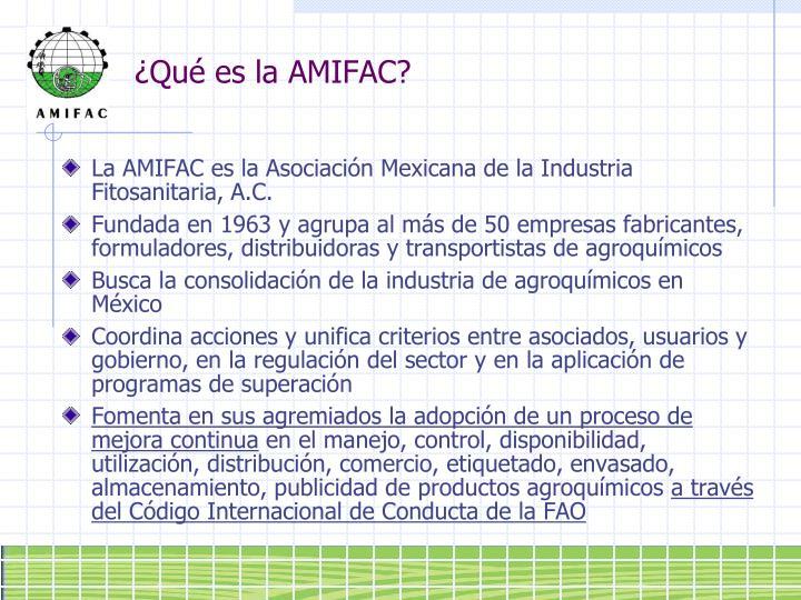 ¿Qué es la AMIFAC?