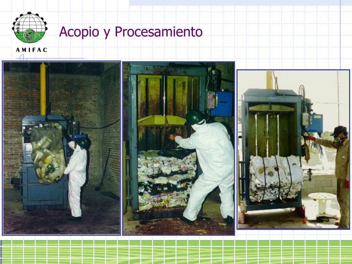 Acopio y Procesamiento