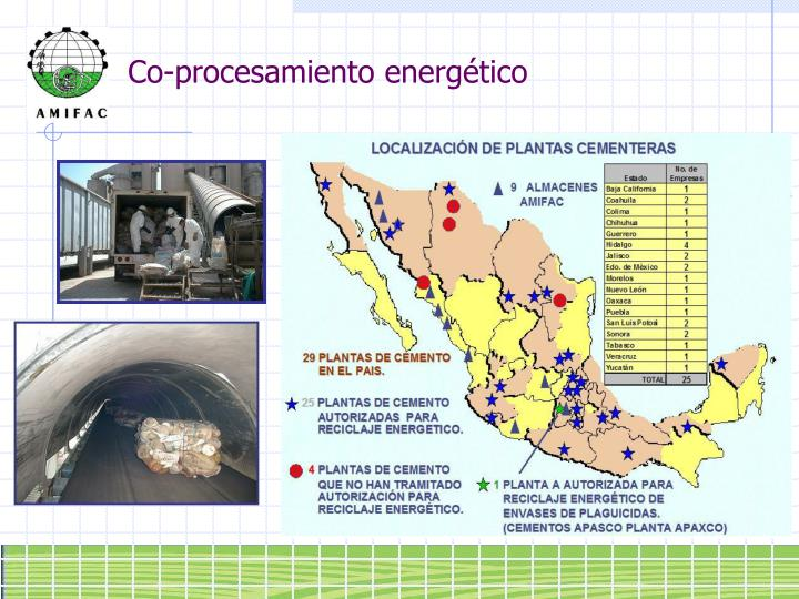 Co-procesamiento energético