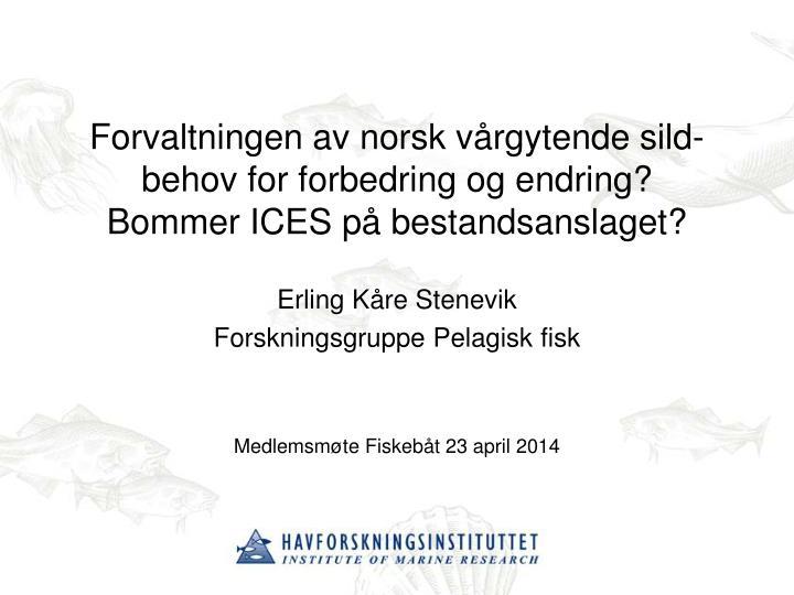 Forvaltningen av norsk vårgytende sild-behov for forbedring og endring?