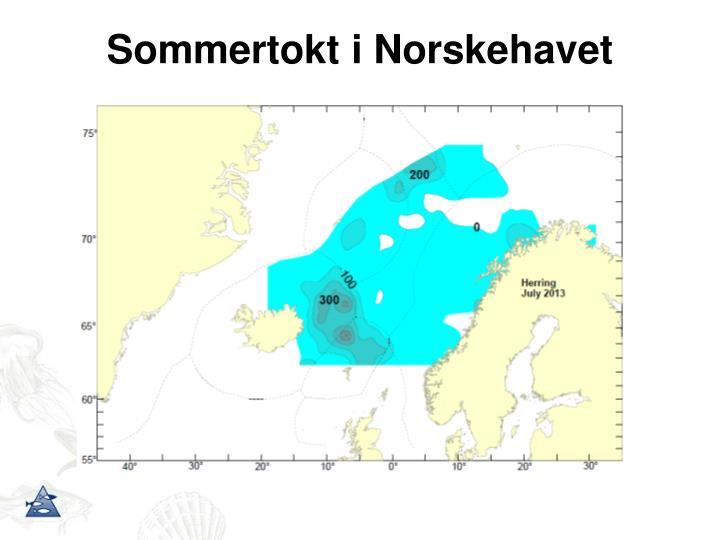Sommertokt i Norskehavet