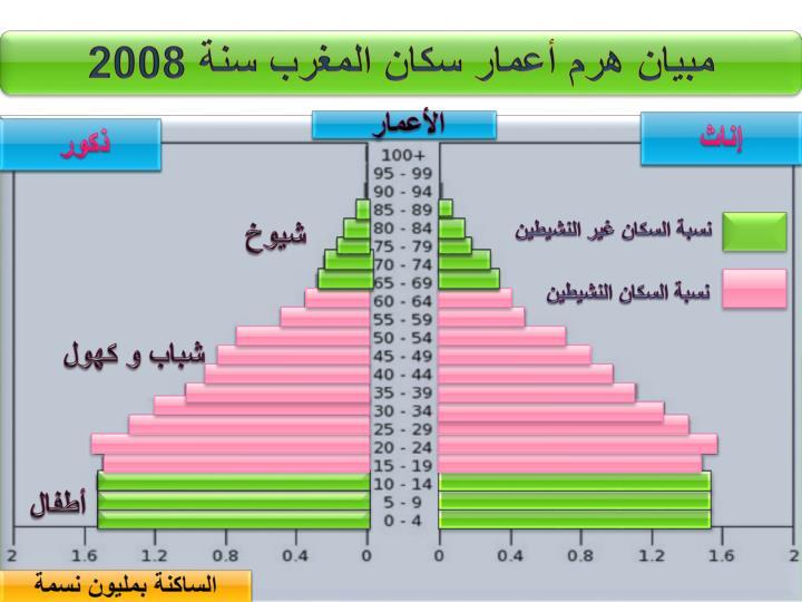 مبيان هرم أعمار سكان المغرب سنة 2008