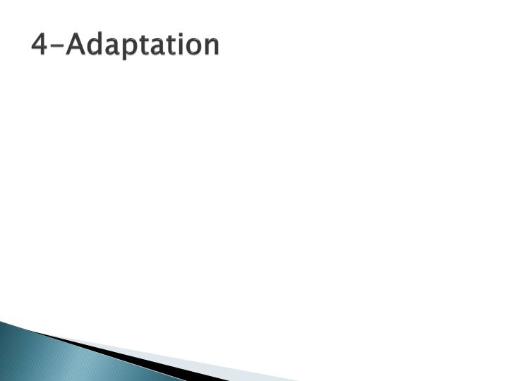 4-Adaptation