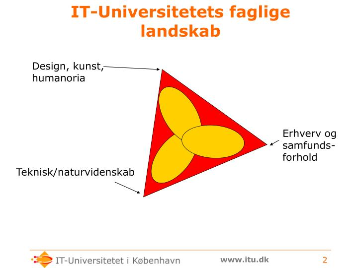 It universitetets faglige landskab