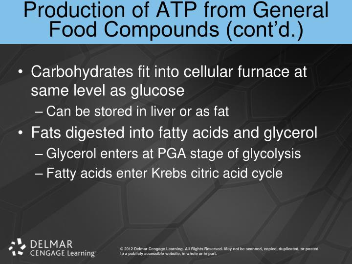 Production of ATP from General Food Compounds (cont'd.)