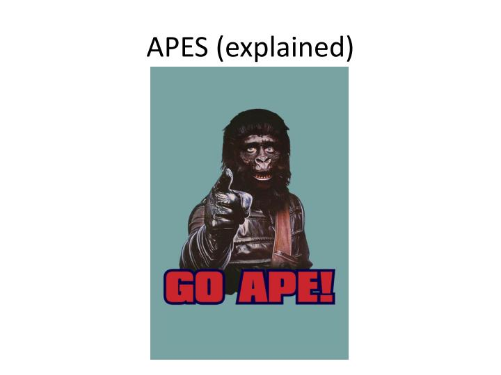 APES (explained)