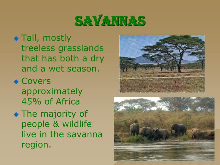 Savannas