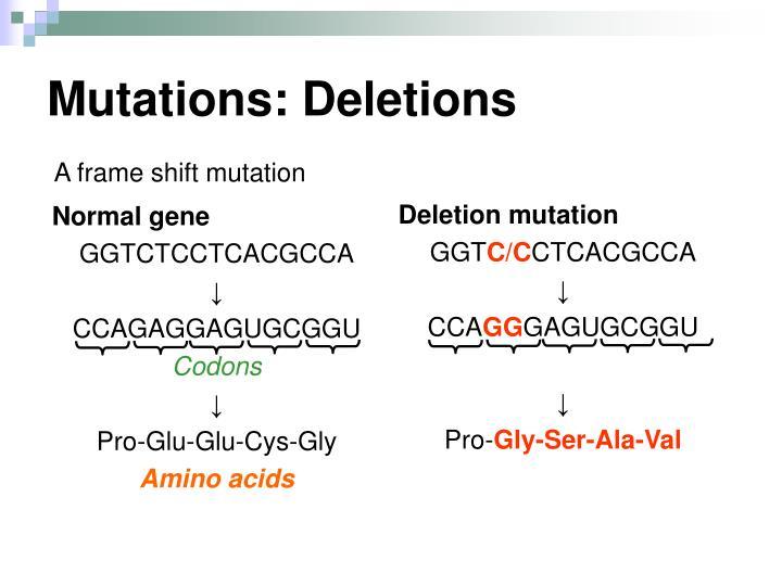 Mutations: Deletions