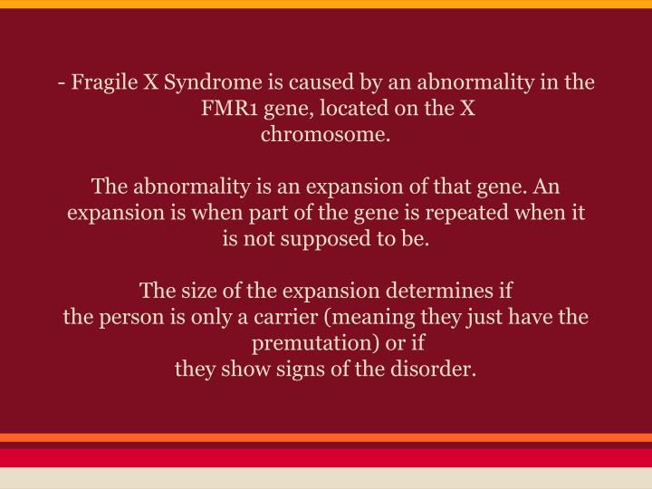 - Fragile X Syndrome is caused by an abnormality in the FMR1 gene, located on the X