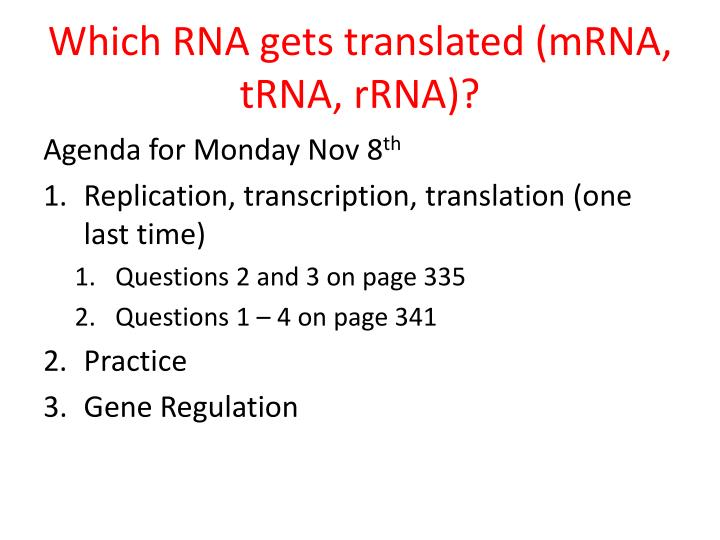 Which RNA gets translated (mRNA, tRNA, rRNA)?