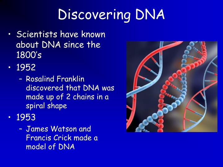watson and crick discovering dna Watch video  nobel laureate james watson opens ted2005 with the frank and funny story of how he and his research partner, francis crick, discovered the structure of dna.