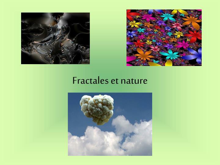 Fractales et nature