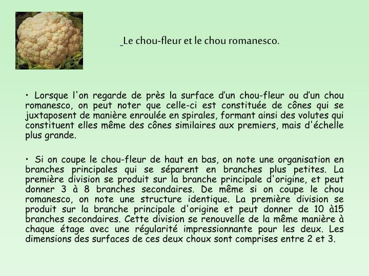 Le chou-fleur et le chou romanesco.