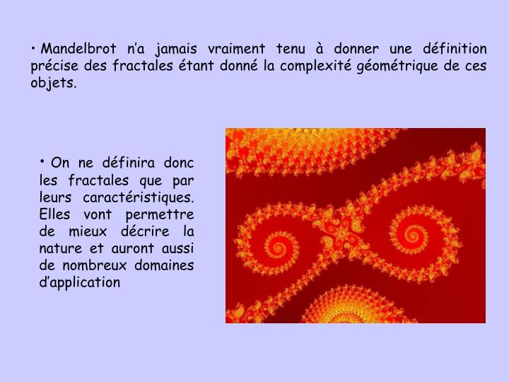 Mandelbrot na jamais vraiment tenu  donner une dfinition prcise des fractales tant donn la complexit gomtrique de ces objets.
