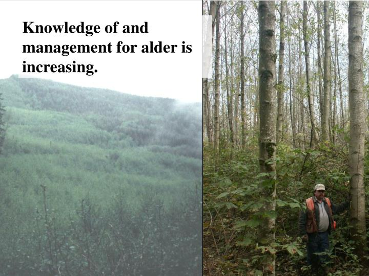 Knowledge of and management for alder is increasing.
