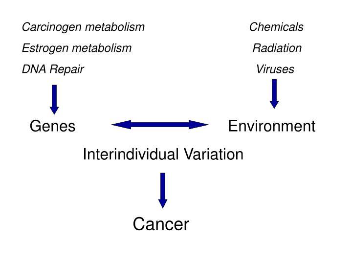 Carcinogen metabolism     Chemicals