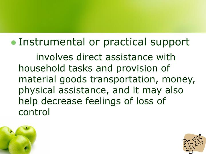 Instrumental or practical support