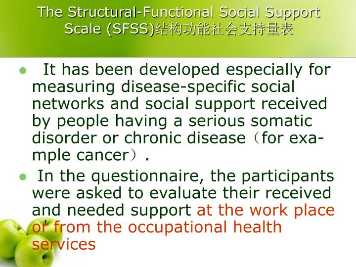 The Structural-Functional Social Support Scale (SFSS)
