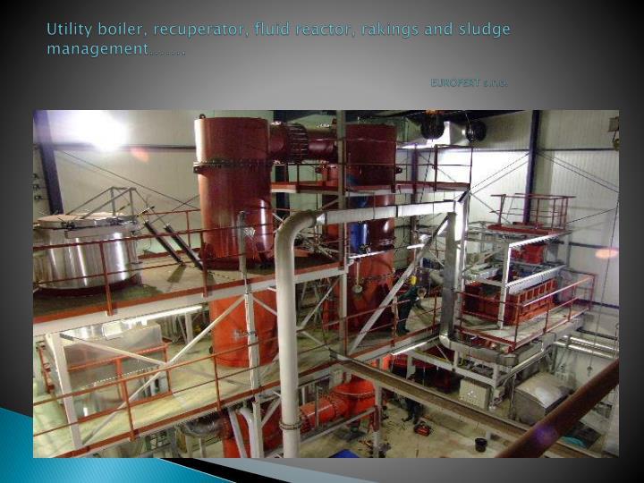 Utility boiler,