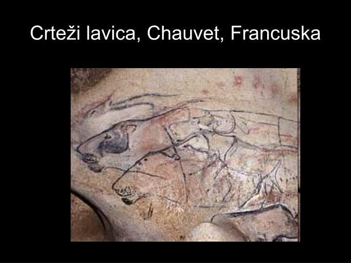 Crteži lavica, Chauvet, Francuska