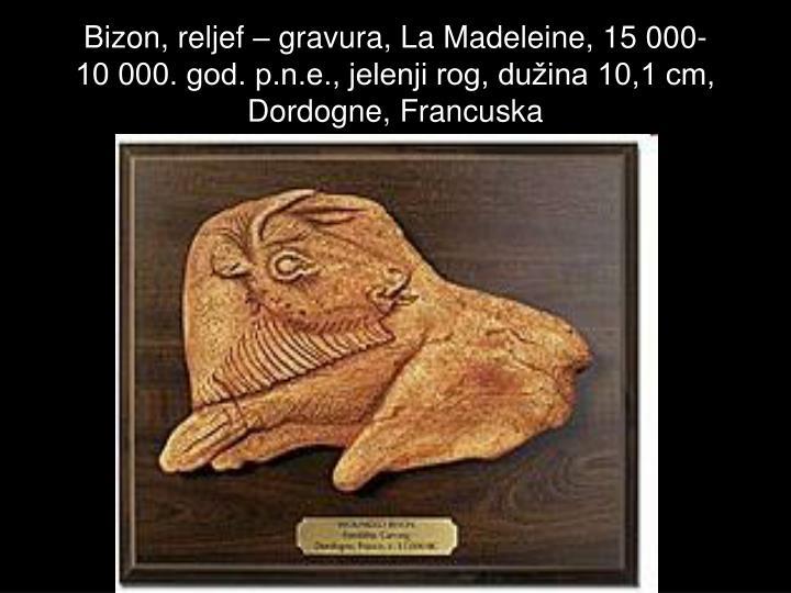 Bizon, reljef – gravura, La Madeleine, 15 000-