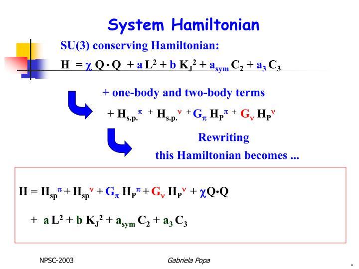 System Hamiltonian