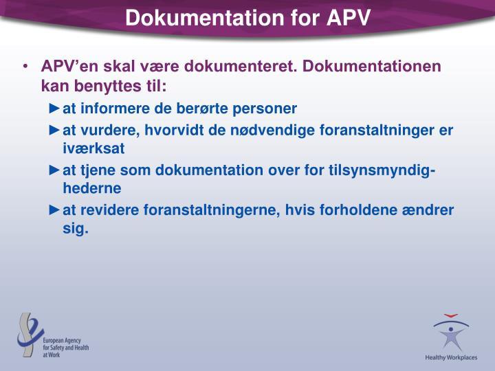 Dokumentation for APV