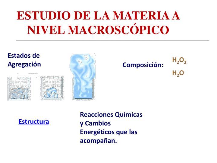 ESTUDIO DE LA MATERIA A NIVEL MACROSCÓPICO