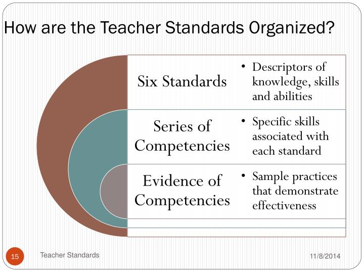 How are the Teacher Standards Organized?