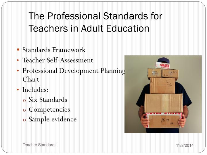 The Professional Standards for Teachers in Adult Education