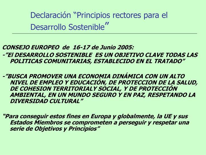 """Declaración """"Principios rectores para el Desarrollo Sostenible"""