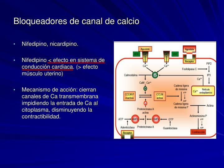 Bloqueadores de canal de calcio