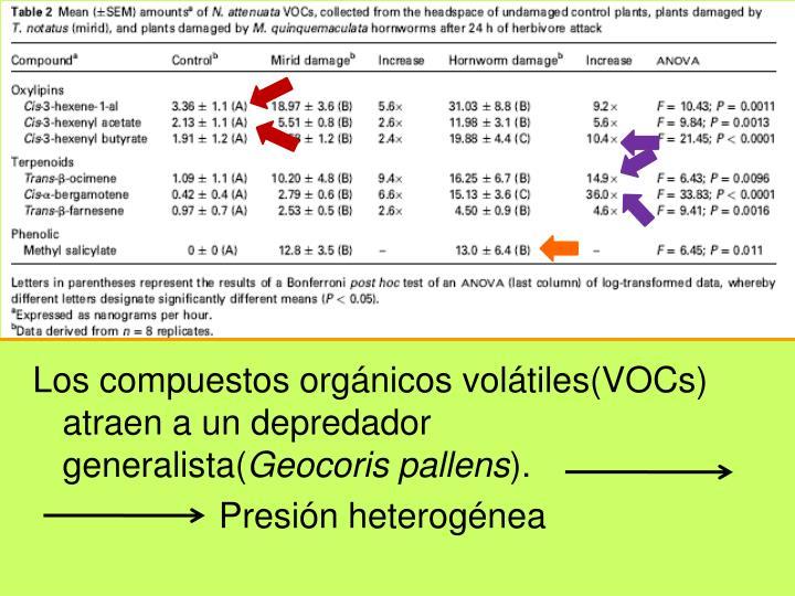 Los compuestos orgánicos volátiles(VOCs) atraen a un depredador generalista(