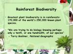 rainforest biodiversity