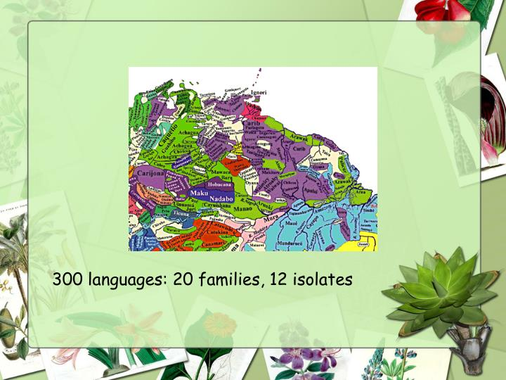 300 languages: 20 families, 12 isolates