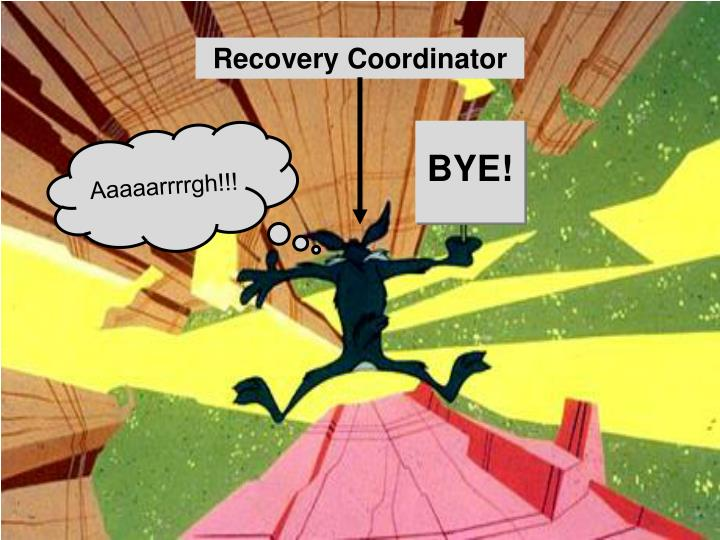 Recovery Coordinator