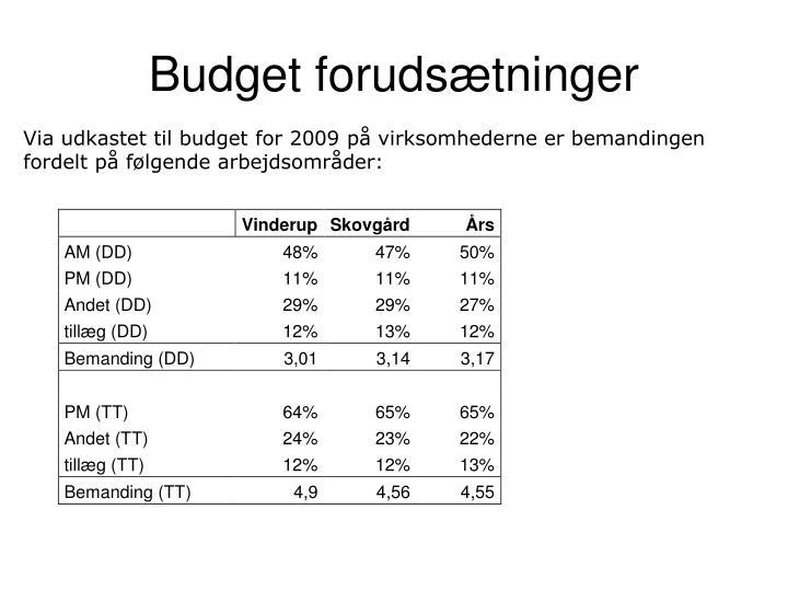 Budget forudsætninger