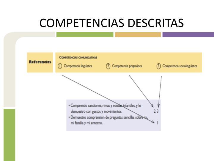COMPETENCIAS DESCRITAS
