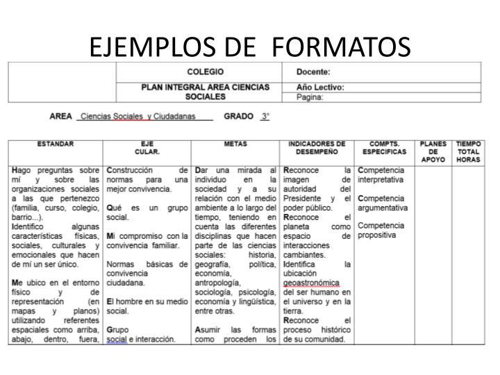 EJEMPLOS DE  FORMATOS