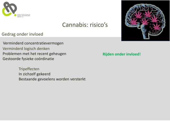 Cannabis: risico's