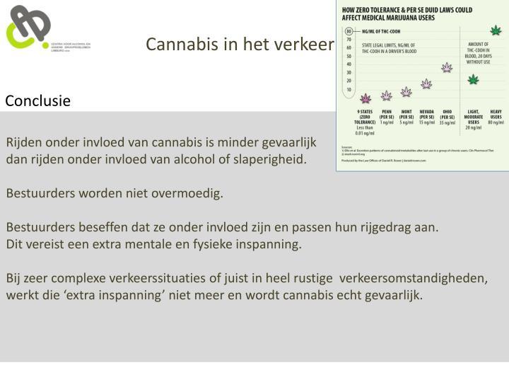 Cannabis in het verkeer