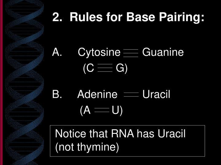 A. Cytosine       Guanine