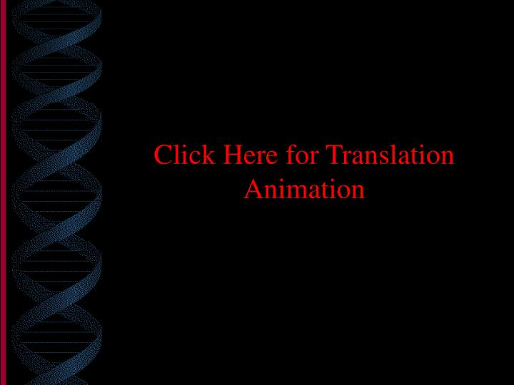 Click Here for Translation Animation