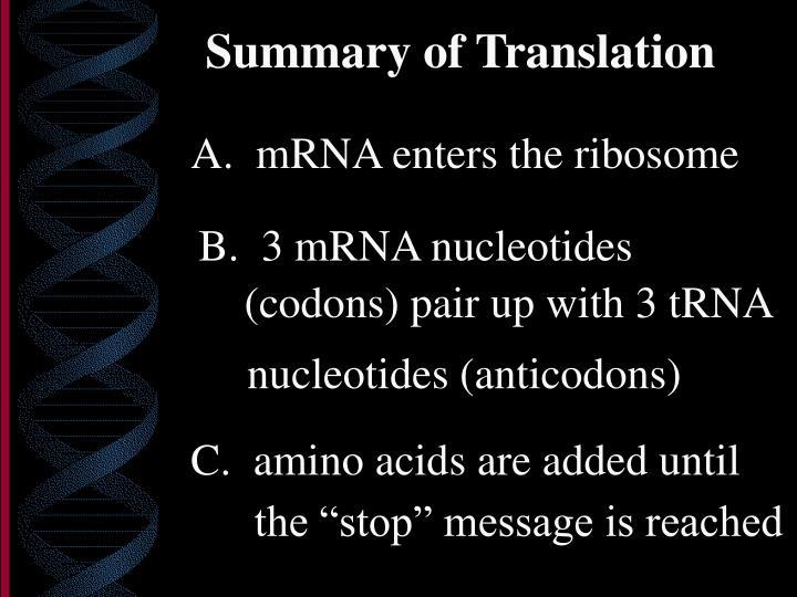 B.  3 mRNA nucleotides