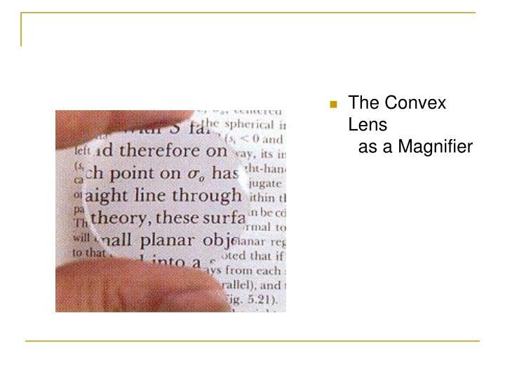 The Convex Lens